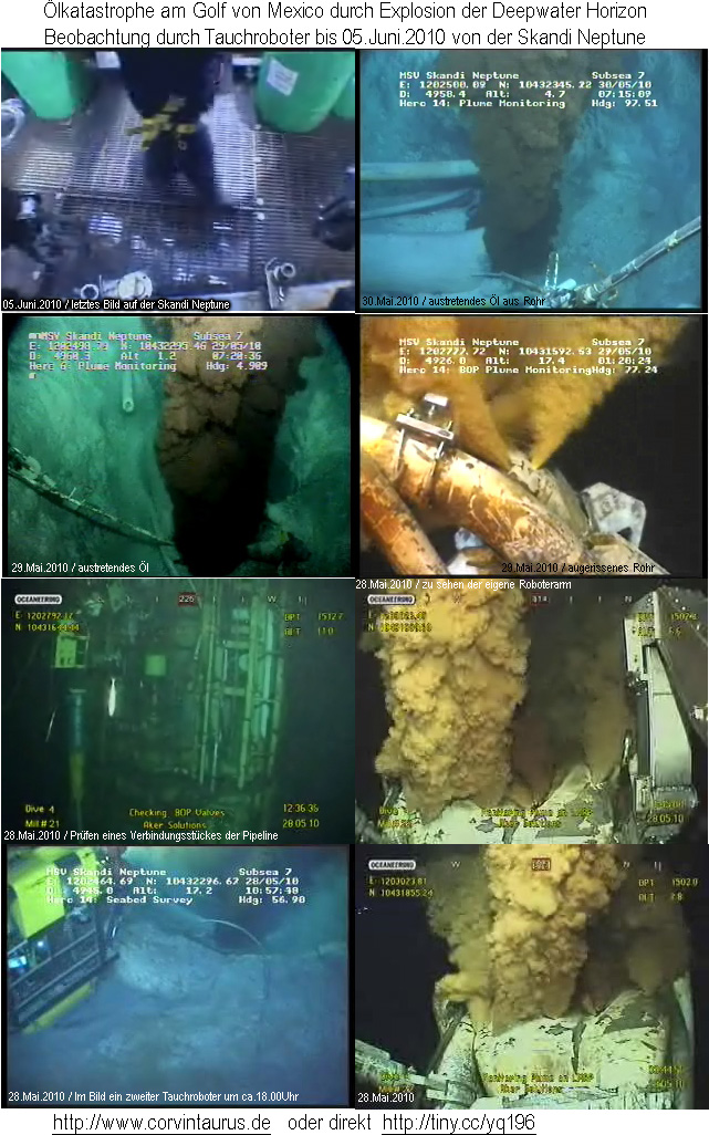 Live Bilder vom ferngesteuerten Roboter von BP am Golf von Mexico